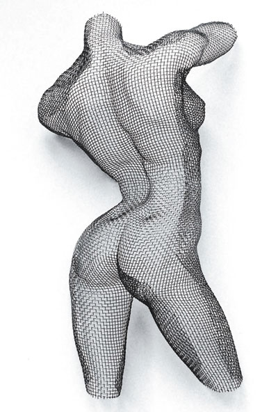 Wire Mesh: DERRIERE, mild steel mesh on MDF block panel, 63h x 48w x 12d cms