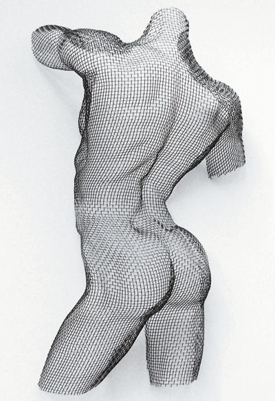 Wire Mesh, LIFESIZE BODY PORTRAIT COMMISSION, mild steel mesh, free hanging.